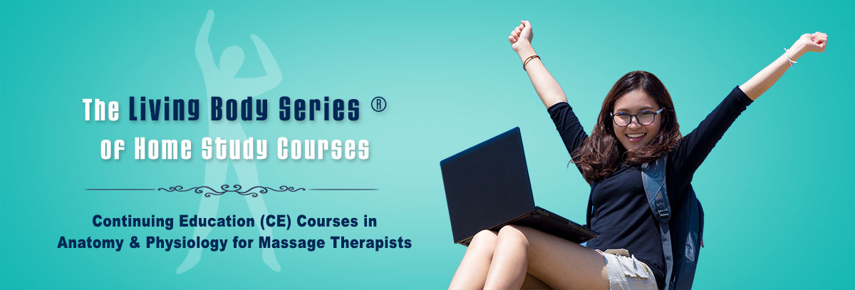 Continuing Education (CE) Courses in Anatomy and Physiology for Massage Therapists